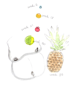 fetal fruit